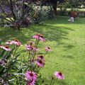 Eté jardin