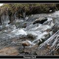 2009 01 21 Le ruisseau en hiver