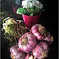Ail frais rôti au thym & ail frais confit