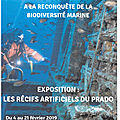Exposition : les <b>récifs</b> artificiels du Prado - Marseille - Exhibition: the artificial reefs of the Prado