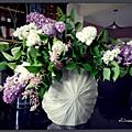 Le lilas, tout excès nuit...