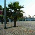 Seckasysteme-CornichecasaSeckasysteme-MarocDSCN2047_rs_rs