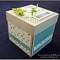 Mini album cube