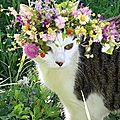 PhotoFunia-1480182425