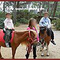 poneys-juil2014