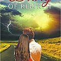 Diary of rebirth, tome 3: résister de bridget page