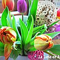 Oh tulipes !