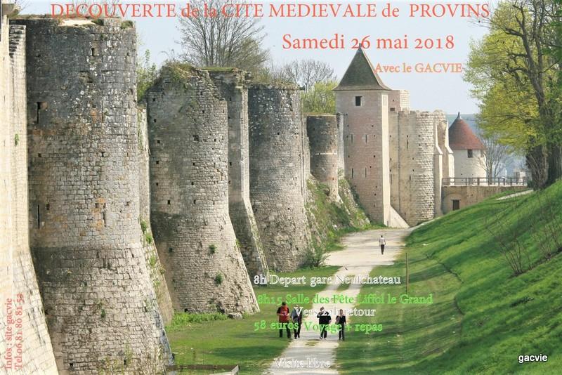 Voyage à Provins