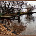 Reflets d'hiver au Lac 3