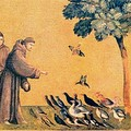 Le sermon aux oiseaux