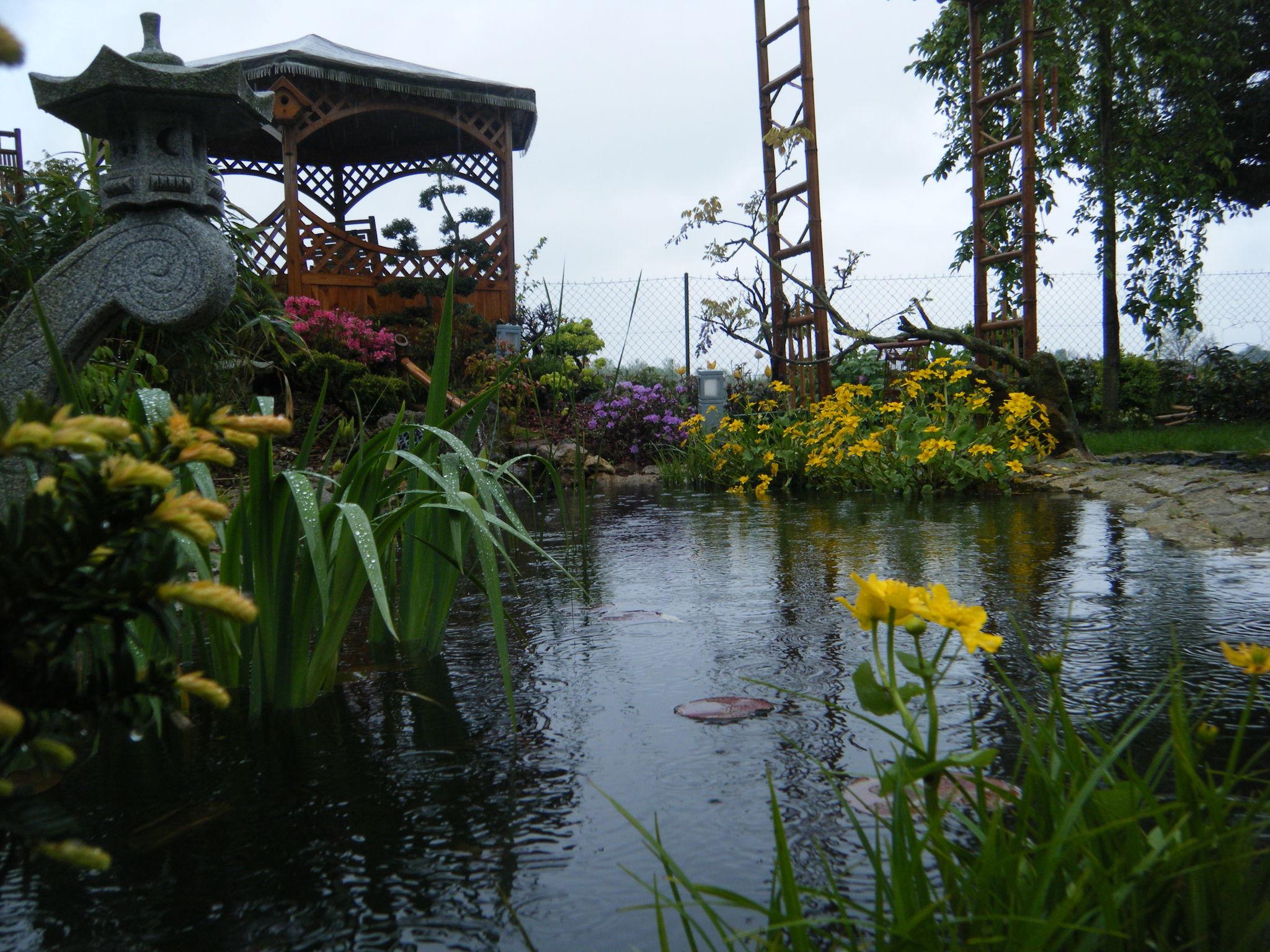 Jardin zen - avril 2012