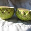 bols artichauts