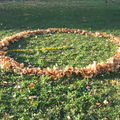 Land art collectif