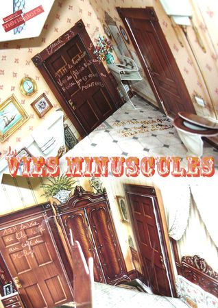 vies_minuscules