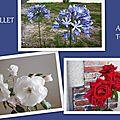 1-Fleurs de Léon 090717