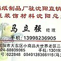 <b>Xiao</b> <b>Dong</b> : Felt and Tissue Paper / Feutrine et Papier de soir