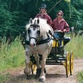 Selection equipe boulonnaise route des vins et du comté 2006