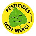 Pesticides : des communes en cure de désintox