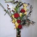 Bouquet des lumières (novembre 2005)