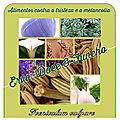 <b>ERVA</b>-<b>DOCE</b> & FUNCHO (Foeniculum vulgare) - Alimentos