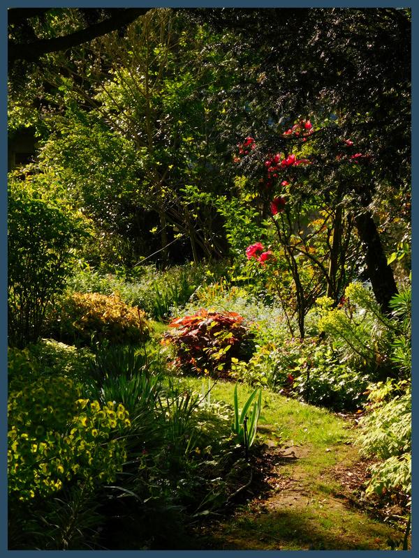 Jardin André Eve 26-04