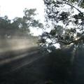 Chiapas highlands - Misol-Ha Falls