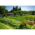 Taxe sur les travaux de jardinage en augmentation !