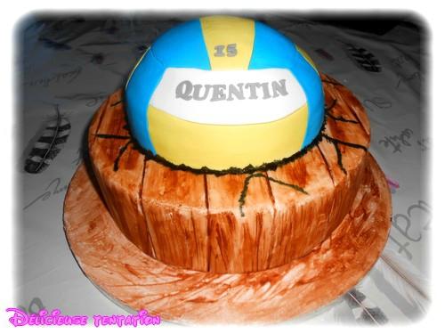 Gâteau volley ball