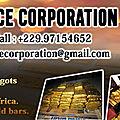 Prestations de service GOLD NEGOCE CORPORATION LTD