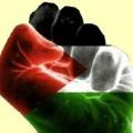 Journée <b>internationale</b> de <b>solidarité</b> avec le peuple palestinien.