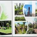 Pairi daiza 2012 - mura mura territory (suite)