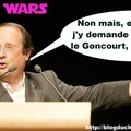 Hollande sego
