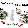 Desherbant maison naturel bio, écolo et économique au vinaigre -Tuto jardinage + test-