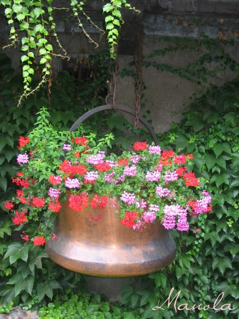 ravissement florale