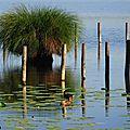Balade au Lac 1707