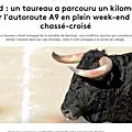 bovine , e