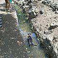 Savane et bassins