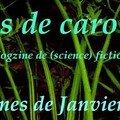 Fanes de carottes - 2008/01