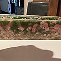 Terrine de viandes en <b>gelée</b>
