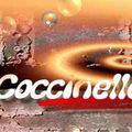 coccinellesonia6