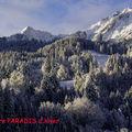 Plaisir d'hiver ...winter pleasure ...