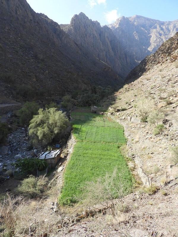 2018-03 Oman 077(1)