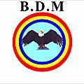 Decision n°001/bdm/p.n./n.n./02-2017 du 04/02/2017 portant exclusion de monsieur mantezolo diatezua papy du parti politique bdm