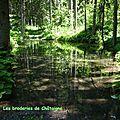 Le lac des Evettes-28