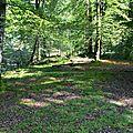 Un jour forêts d'Aspe Barétous : le 26 septembre 2011