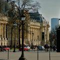 Le Petit Palais depuis la place Clemenceau.