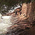 Sentier du littoral (28)