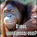 CONDITION ANIMALE / STOP SOUFFRANCES ...