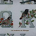 Les oiseaux Q R