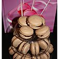 Macarons choco-cannelle